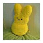 LollipopWut's avatar