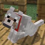 Suchae34g's avatar