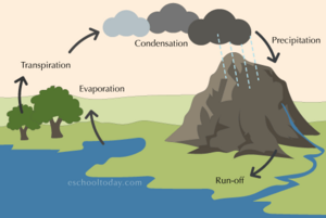 Water Cycle   Geology Fundamentals   FANDOM Powered By Wikia