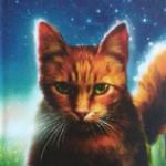 Hopewish's avatar