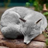 AnonymousDaFox's avatar