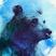 BluBear's avatar