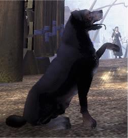 Dog (Fable II)