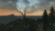 Headman's Hill (TLC)