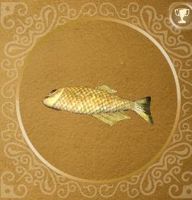 Золотая рыбка (трофей)
