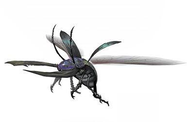 Black Beetle (Anniversary).jpg