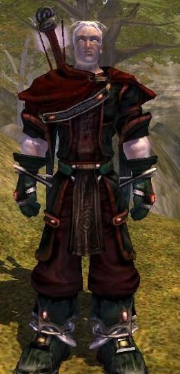 Dark Will User's Outfit.JPG