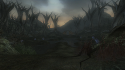 Darkwood Marshes.png
