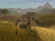 Ego Landscape12