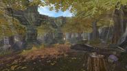 Guild Woods (TLC)