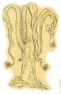 Drzewo żądlikulowe