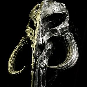 Deltawave63's avatar