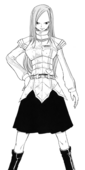 Apparence d'Erza dans le manga