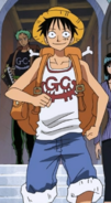 Luffy's Post-Enies Lobby Arc Outfit