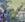 Edolas Fairy Tail.png