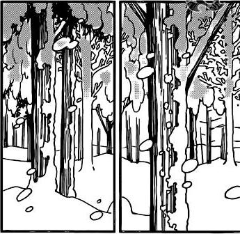 Bosque Aba