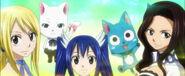 Lucy heartfilia charle happy wendy marvell cana alberona fairy tail anime