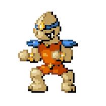 Martial Pokémon