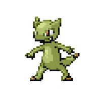 Lizard Pokémon
