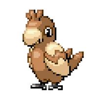 Parrot Pokémon