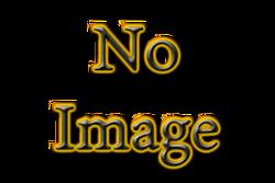No Image.png