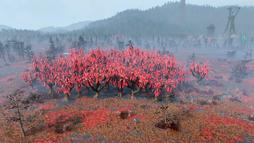 FO76VDSG Overgrown sundrew grove.png
