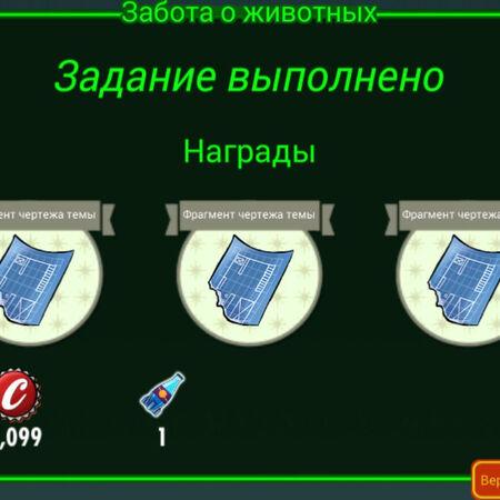 FoS Забота о животных Награды.jpg