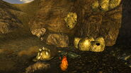 FNV Pile of cazador eggs