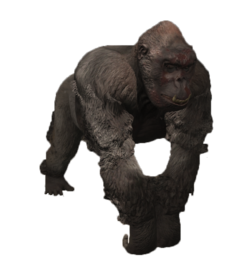 FO4 NW Ghoulrilla.png