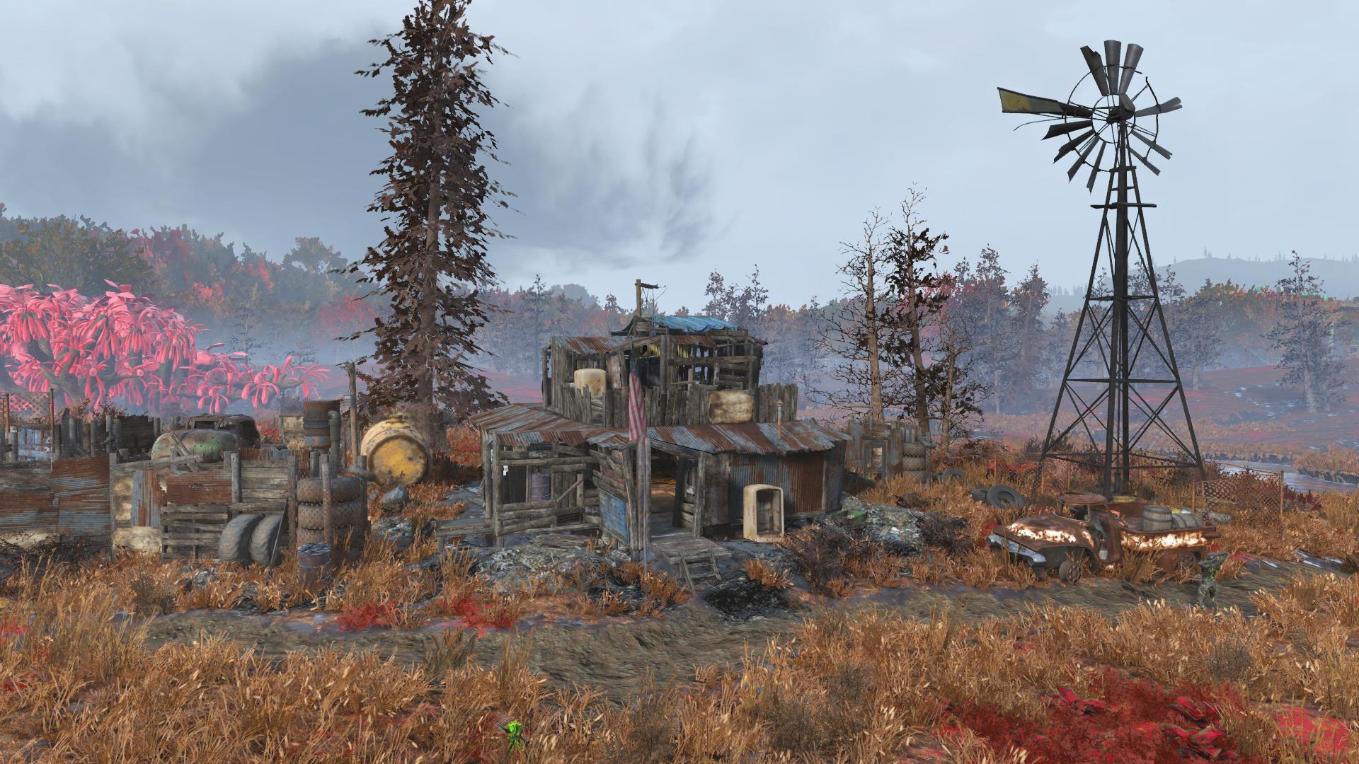 Bootlegger's shack