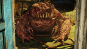 Scorched Radtoad.png