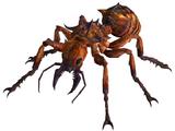 Вогненна мураха
