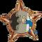 Badge-2689-2