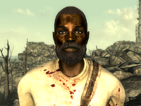 FO3Wasteland doctor4