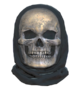 Fallout 76 Halloween Costume Skull.png