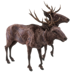 Fo4-radstag.png