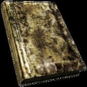 FNV BurnedBook06.png