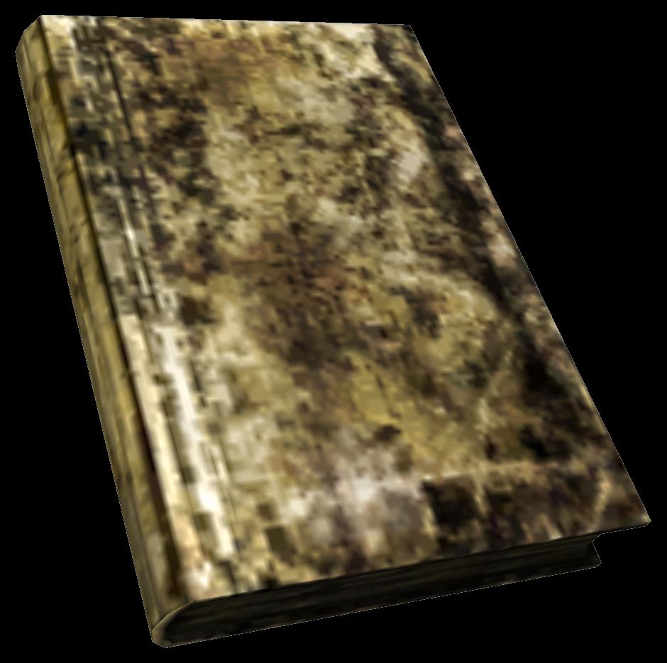 Большая испорченная книга