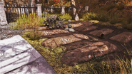 FO76 Flora Forest 3