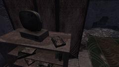 DM Journal ruined store.jpg