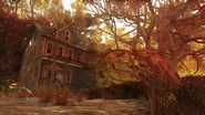 FO76 Mire vibes 2