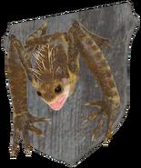 FO76 taxidermy frog