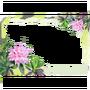 Atx photomode frame florarhododendron l.webp