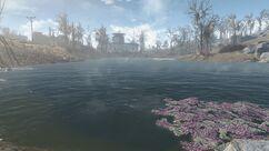 Dark Hollow pond.jpg