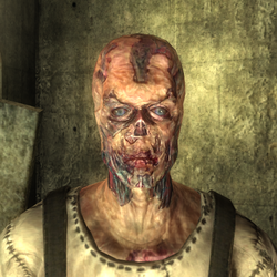 FO3 Wint w hat.png