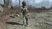 FO4 Synth Stormer.jpg