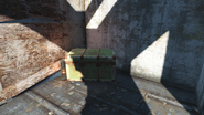 FO4 Brookline building green trunk