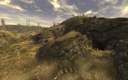 Cazador nest.jpg