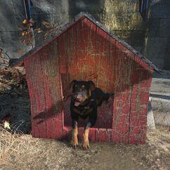 FO4-Junkyard dog-black.jpg