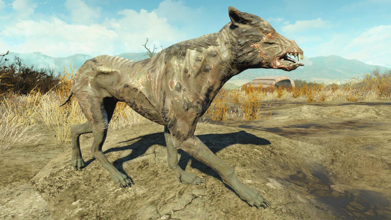 Дворняга (Fallout 4)